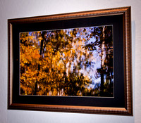"IMAGE: Cezanne's_Dream | 16"" x 24"" 