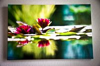 "IMAGE: lilies_of_Monet | Canvas Gallery Wrap | 20"" x 30"" 